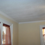 Trim and Paint  (2)